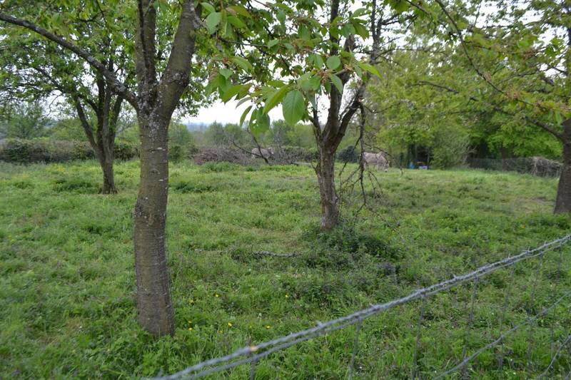 02260 FROIDESTREES - 19 200 €